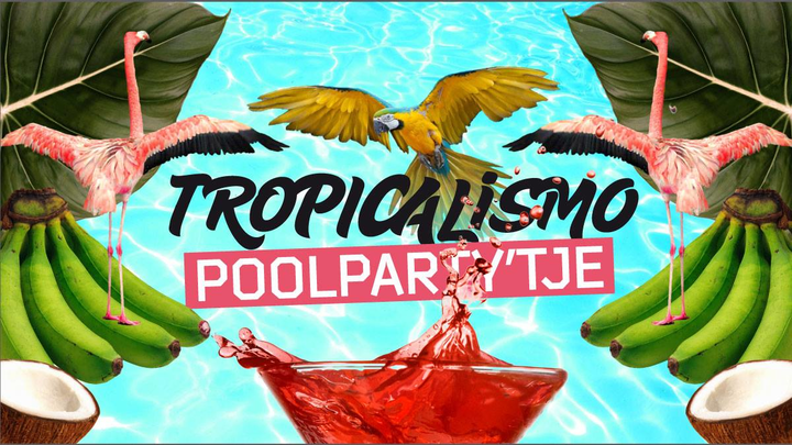 Tropicalismo: Poolparty'tje